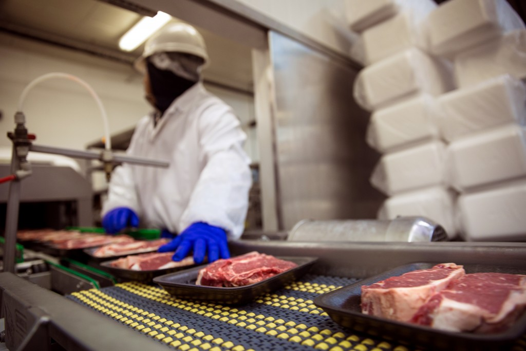 Meat Food Handling Safety Gloves And Suit With Mask