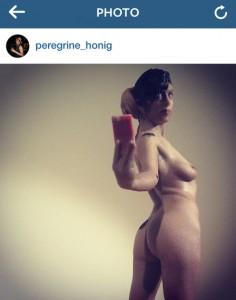 Peregrine 5