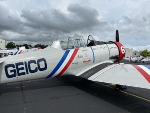 Liz Cook Plane 2