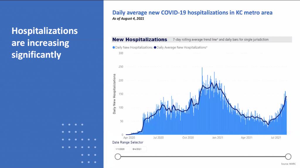 Daily Hospitalizations